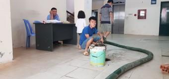 Kinh nghiệm khi gọi thợ đến hút bể phốt